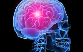 3д-проекция головы человека